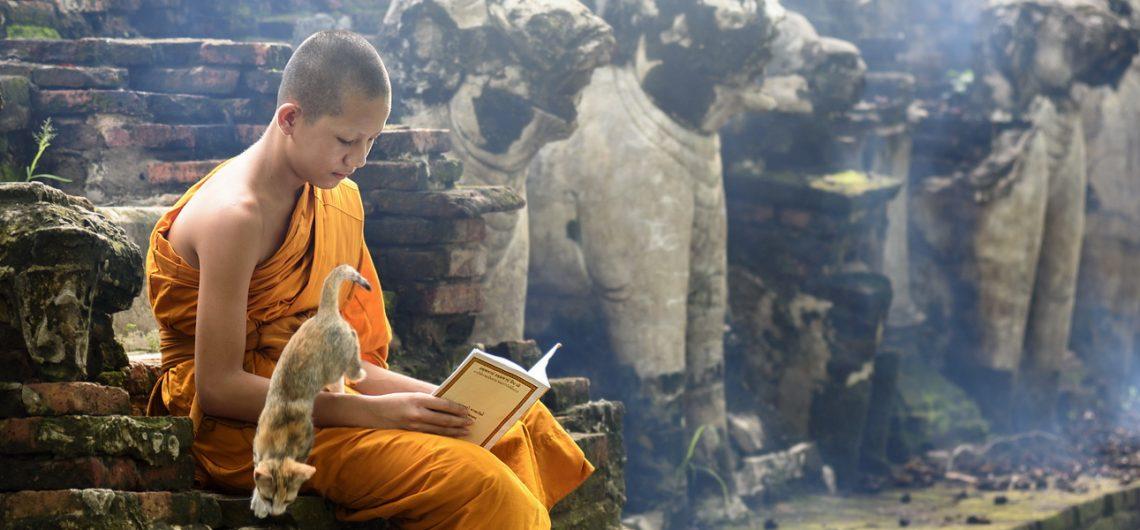 Contact Asian Monk