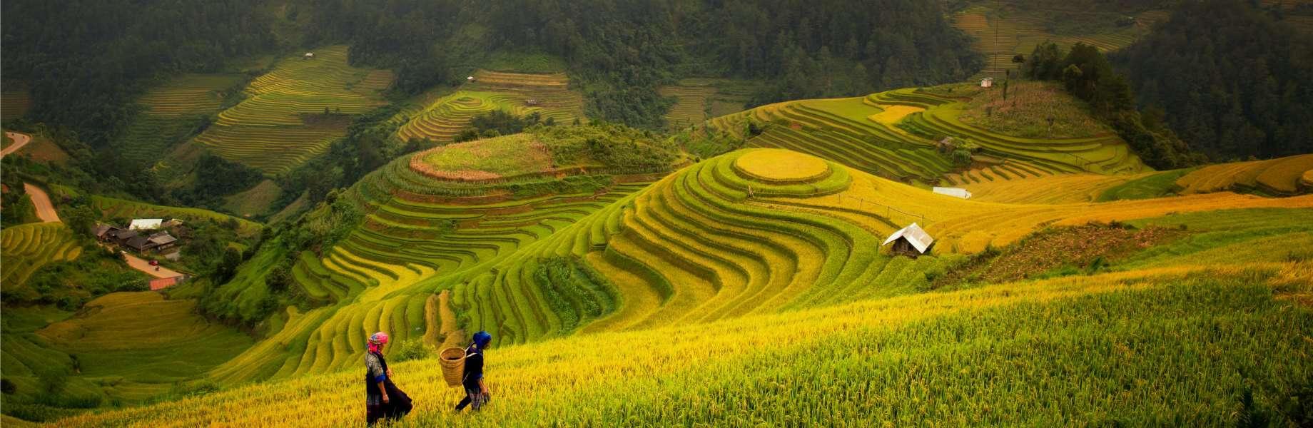 Discover Southeast Asia - Vietnam