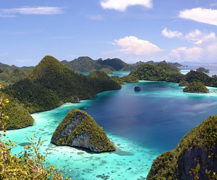 Raja Ampat Jewels