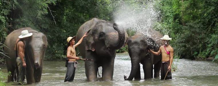 Elephant Hills Jungle Camp – Thailand